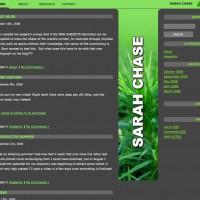 sarah_blog